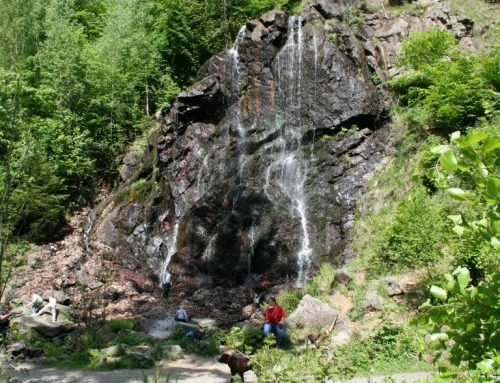 Harzer Wandernadel – Molkenhaus (HWN 169) und Radaufall